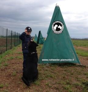 Rottweiler-campo-1